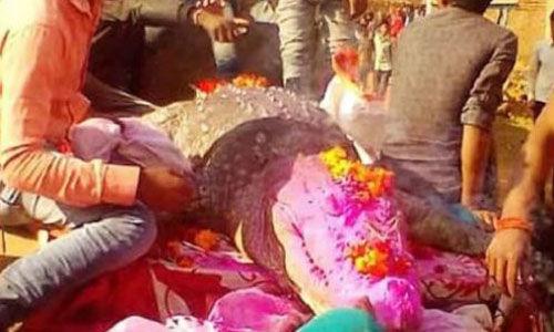 മുതലയുടെ വിയോഗത്തില് കണ്ണീര് വാര്ത്ത് ഒരു ഗ്രാമം മുഴുവന്