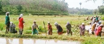 പ്രളയശേഷം തൊഴിലുറപ്പില് പുതിയതായെത്തിയത് 63285 കുടുംബങ്ങള്