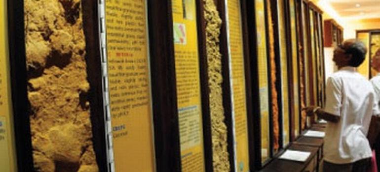 സോയില് മ്യൂസിയത്തില് 28 വരെ വിദ്യാര്ഥികള്ക്ക് പ്രവേശനം സൗജന്യം