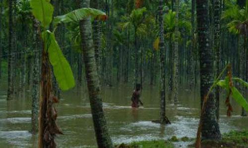 മഴക്കെടുതി: ഇടുക്കി ജില്ലയില് 18 ദുരിതാശ്വാസ ക്യാമ്പുകള്